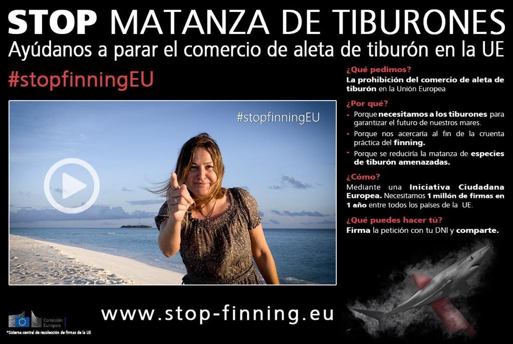 Firma contra matanza de tiburones