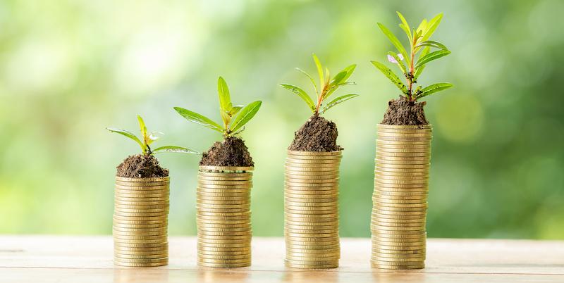 Monedas apiladas crecen plantas/vida encima de ellas
